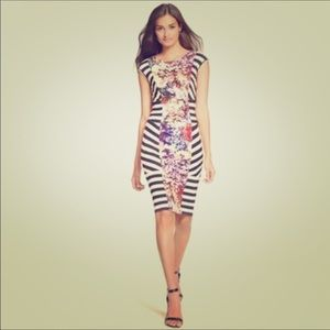 Nicole Miller Floral & Stripe Mixed Print Dress!
